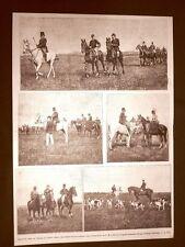 Brughiera di Gallarate nel 1890 Re Umberto I di Savoia nella caccia al daino