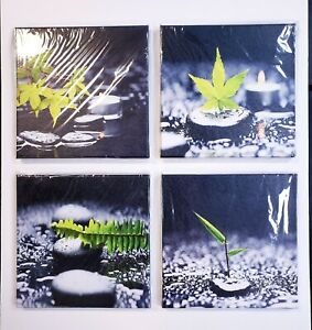 "Set of 4 Black & White w/ Green Leaf & Grass Accents 12""x12"" Canvas Art Panels"