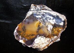 Amethyst Sage Purple/Gold Chalcedony Dendritic Rough - NV - 4.6 lbs.