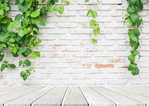 LB 10x8ft Vinyl Background Studio Backdrop Brick Wall Green Leaves Wooden Floor