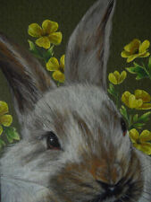 ACEO  Rabbit Bunny Hare animal Buttercup print