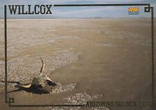 "*Arizona Postcard-""Willcox"" /Facts*Folklore*History*Legend/  (U2-AZ10)"
