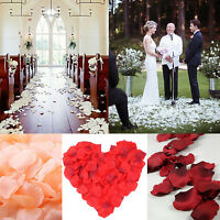 Black Table Decorations Flower Home Petals 2000pcs Various Party Rose Colors