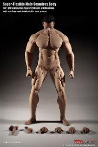 TBLeague Phicen Super Flexible Male Seamless 1/ 6 Body-M35