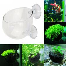 Aquarium Fish Tank Glass Live Plant Cup Pot Aquatic Crystal Red Shrimp Holder/