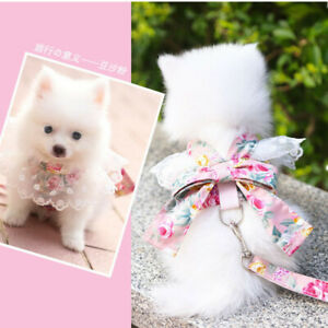 Small Girl Dog Harness Cat Vest Leash Set Female Pet Clothes Puppy Collar Lead