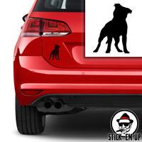 "Staffordshire Bull Terrier 16x16/"" 40 cm Housse de coussin STAFFIE rire Staffy Dog"
