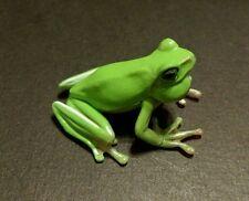 RARE Kaiyodo Animatales ChocoQ Series 9 Hallowell's Green Tree Frog Figure