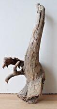 Schwemmholz  Treibholz  Driftwood  1 Wurzel   Dekoration  Basteln Diy  294