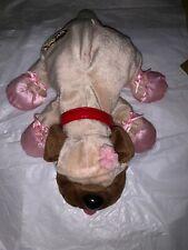 2004 Pound Puppy Ballet Theme. Mattel