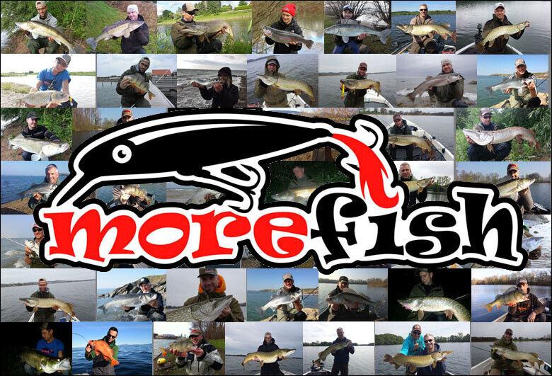 morefish Angelbedarf