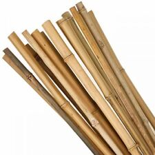 More details for 3ft-7ft bamboo wooden plant sticks garden plants support canes strong stick cane