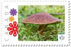 brown MUSHROOM, Custom Postage stamp MNH Canada 2018 [p18-04sn18]