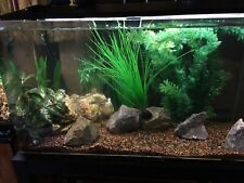Acrylic Aquarium,Stand,and Light 50 Gallon - Pick Up Pueblo West Colorado