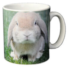 Bunny Rabbit Ceramic Coffee Mug - An Ideal Gift Easter Gift