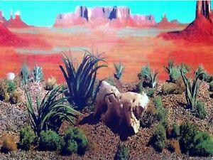 """24"""" TALL Desert Waterproof Aquarium / Vivarium Background Poster Picture"""