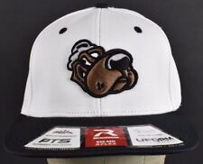 6bde833a6ff White Dog With Hat Team Logo Richardson Embroidered Baseball hat cap Fitted