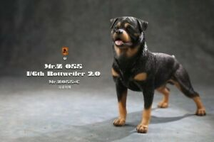 1:6 Mr. Z Rottweile Resin Dog Animal Statue Model Scene Toy MRZ055-C Collection