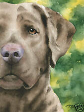 Chesapeake Bay Retriever Dog Watercolor 8 x 10 Art Print by Artist Djr