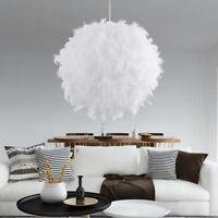 Moderne boule de plume lumière ombre plafonnier lampe de salon suspension