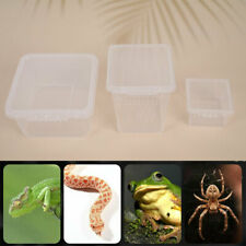 Insect Breeding Box Feeding Reptile Transport Gecko Lizard Spider Insect Cage