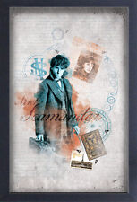 FANTASTIC BEASTS CRIMES OF GRINDELWALD NEWT COLLAGE 13x19 FRAMED GELCOAT POSTER!