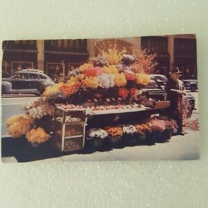 California Flower Stand 1949 Old Cars Main Street City Used Vintage