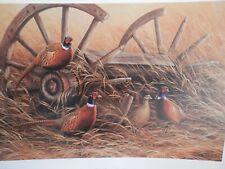 Rosemary Millette Rustic Retreat Pheasants