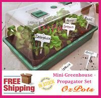 Complete Mini-Greenhouse - Propagator Set - Great for Propagation & Seedling
