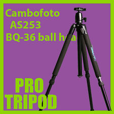 Brand new Cambofoto AS253 professional tripod +BQ-36 ball head
