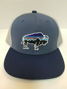 Patagonia Fitz Roy Bison Kids/Adolescents/Womems. Dolomite Blue.
