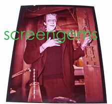 The Munsters vintage photo transparency Fred Gwynne Herman CBS-TV Frankenstein