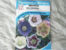 SEEDS T&M FLOWER  HELLEBORUS WINTER FLOWERING MIXED SEED RRP £4.99