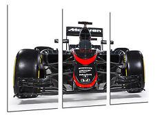 Cuadro Moderno Coche Formula 1, Mclaren F1, Fernando Alonso, ref. 26506