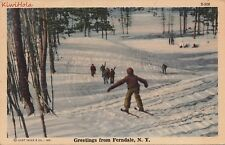 Postcard Cross Country Skiing Greetings Ferndale NY