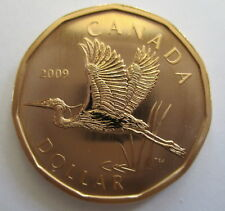 2009 CANADA $1 GREAT BLUE HERON SPECIMEN DOLLAR COIN