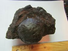 Port Royal Coral Encrusted 2 Pound Cannonball, Captain Henry Morgan'S Brig,1692