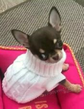 Chihuahua Clothes XXXS Dog Coat Teacup Size White Pet Jumper Puppy Also xxs xs