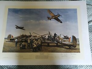 Battle of Britain Multi Signed Print Not Taylor