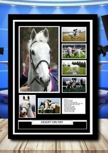 (154) desert orchid horse racing legend photograph unframed/framed  (reprint) @@