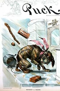 Income Tax Ruling 1895 SUPREME COURT DECISION - UNCONSTITUTIONAL Mongrel Dog