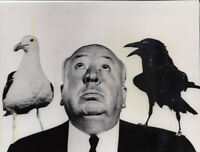 Photo de Presse Alfred Hitchcock 16x21cm