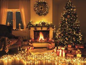 LED CLUSTER LICHTERKETTE WARMWEISS 360-1152 LED 8,6-16,5 m IP44 Büschellichterke