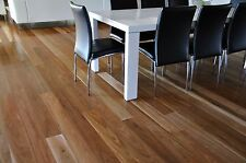Spotted gum Select Grade Hardwood Timber Flooring