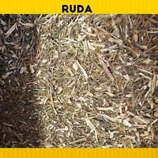 RUDA Máxima Calidad!! (Ruta graveolens)1POUND. RUE HERB Good Quality!!MEXICO.