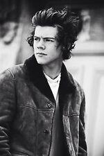"Harry Styles Music Star Fabric poster 20x13"" Decor 01"
