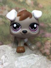 Littlest Pet Shop Baby Dog Puppy Petriplet HTF 1877 Grey Brown