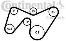 CONTITECH Juego de correas trapeciales poli V para FORD MONDEO 6PK1642K2