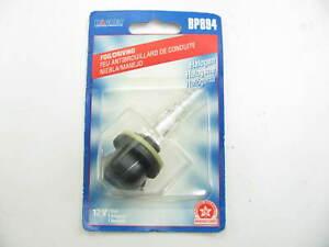 Wagner BP894 Fog Lamp Light Bulb - 12V 37.5W