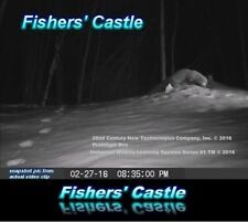 wildlife fisher animal dvd showing a FISHERS' SCENT COMMUNICATION CENTER 1st2see